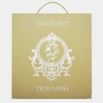 Triumph_8